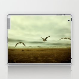 Past, Present, Future of an Extended Moment Laptop & iPad Skin