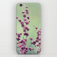 Forgotten iPhone & iPod Skin