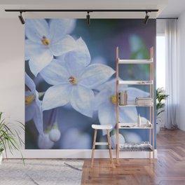 Jasmine Nightshade Flowers #3 #floral #art #society6 Wall Mural