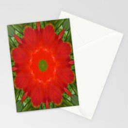 Concentric Nature Stationery Cards