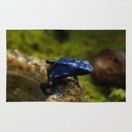 Blue Frog Rug