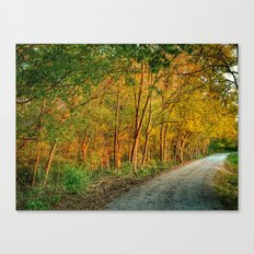 October Walk 3 Canvas Print