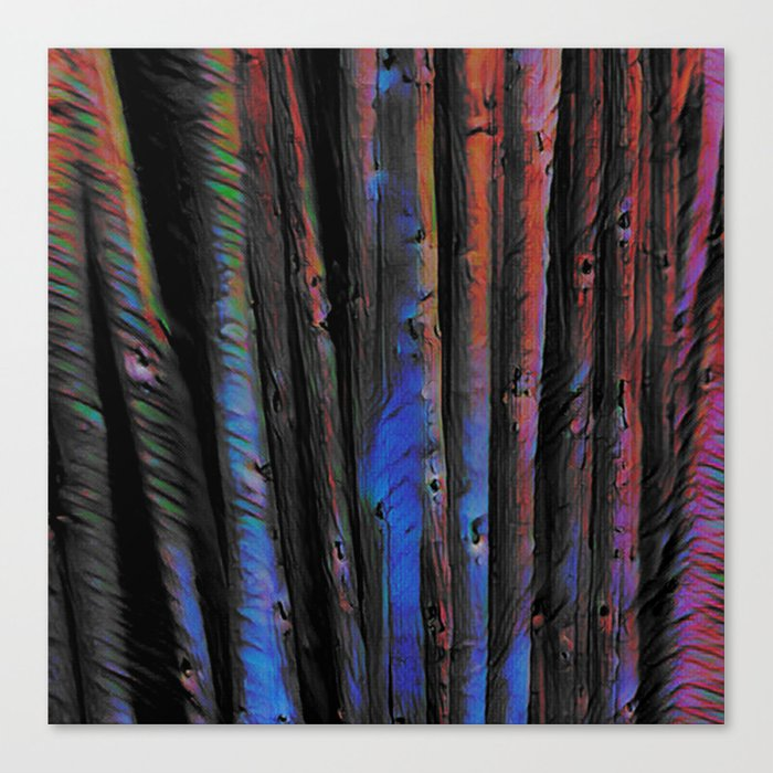 In to Me I See Canvas Print
