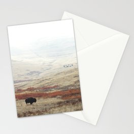 Lone Bison on National Bison Range in Montana Stationery Cards