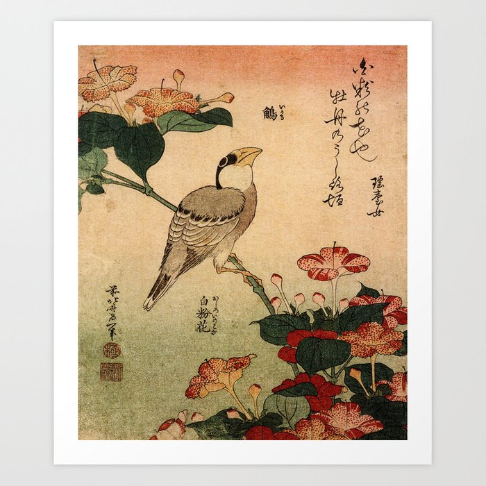 Hokusai,Hawfinch and mirabilis - manga, japan,hokusai,japanese,北斎,ミュージシャン Kunstdrucke