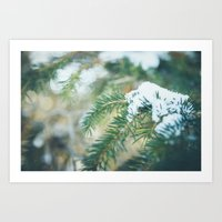 Branches of Alberta.  Art Print