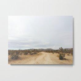 DESERT IV / Joshua Tree, CA Metal Print