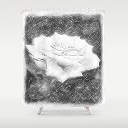 Pink Roses in Anzures 3 Charcoal Shower Curtain