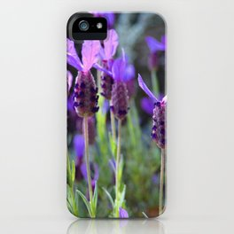 You Better Bee-lieve in Yourself iPhone Case
