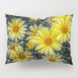 A Pop of Color Pillow Sham
