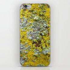 Moss! iPhone & iPod Skin