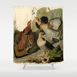 Ruffed Grouse (Bonasa umbellus) Shower Curtain