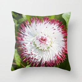 English Daisy Throw Pillow