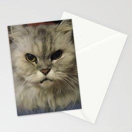 Niki The Cat Stationery Cards