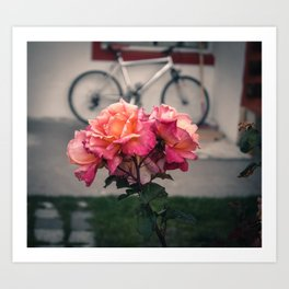 Flowers of El Calafate Art Print