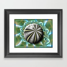 Sea urchin and shell Framed Art Print