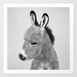 Donkey - Black & White Art Print