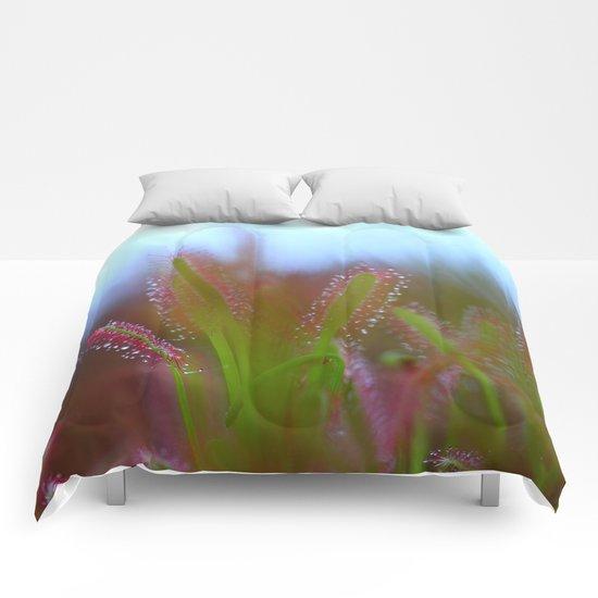 Fairy Like Sundew - JUSTART © Comforters