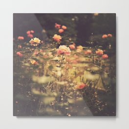One Rose in a Magic Garden (Vintage Flower Photography) Metal Print