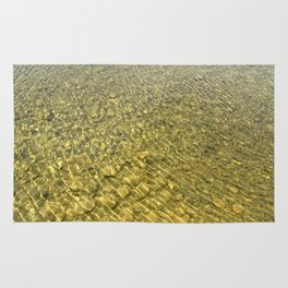 Water background with stones Rug