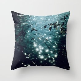 Sparkling Lake in the Morning Sun Throw Pillow