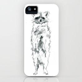 Wild Racoon iPhone Case