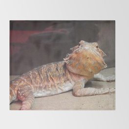 Drogo the Dragon Throw Blanket