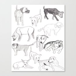 Sayulita Street Dogs Canvas Print