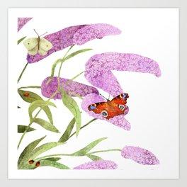 summer lilac Art Print