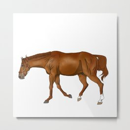 Phar Lap, sorrel/chestnut Thoroughbred (with halter) Metal Print