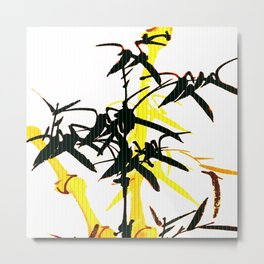 Bambu Branches On The White Background  Metal Print