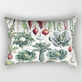 Adolphe Millot - Légumes pour tous - French vintage poster Rectangular Pillow