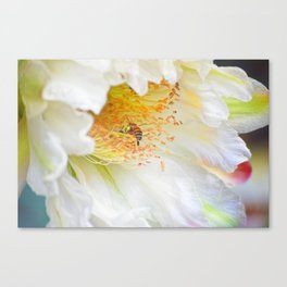Bountiful Morning Harvest Canvas Print