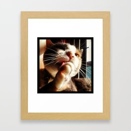 Cleanliness is next to...... Framed Art Print
