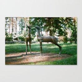 Deers Canvas Print