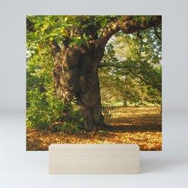 Shady old chestnut tree Mini Art Print