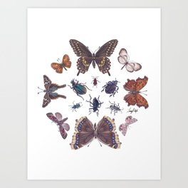 Mosaic of Bugs Art Print
