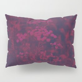 Photograph of wild and wild plants in the field beside the river, in warm color and intense pink Pillow Sham