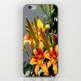 Orange Day Lilies & Buds  Flower Garden iPhone Skin