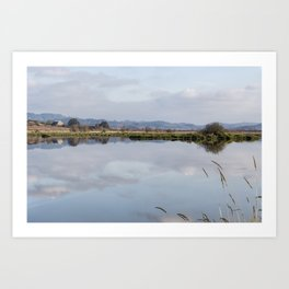 Pastoral Reflections Art Print