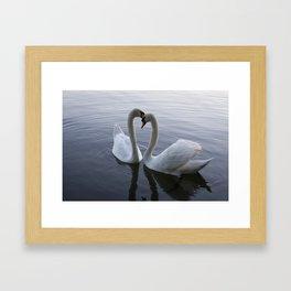 Romatic Swan Couple Framed Art Print