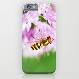 Hoverfly on Allium - Onion Flower 1 iPhone Case