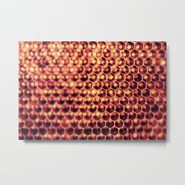 Hi Honey (Beehive) Metal Print