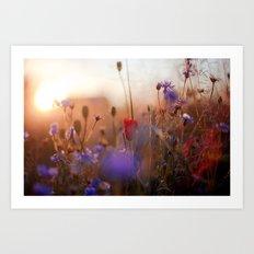 Beautiful Nature Art Print