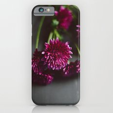 Dalloway's Slim Case iPhone 6s