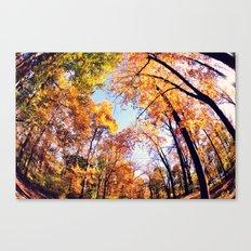 Fisheye Fall  Canvas Print