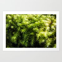 moss Art Prints featuring Moss by Michelle McConnell