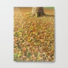 Crunch of Autumn Metal Print