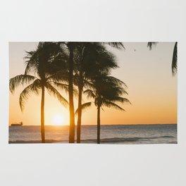 Fort Lauderdale at sunrise Rug