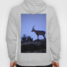 The mountain goat (Lo Salvatge) Hoody